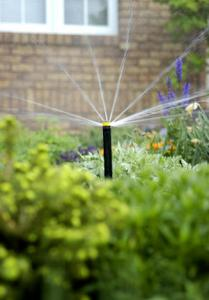 A low flow sprinkler head in action